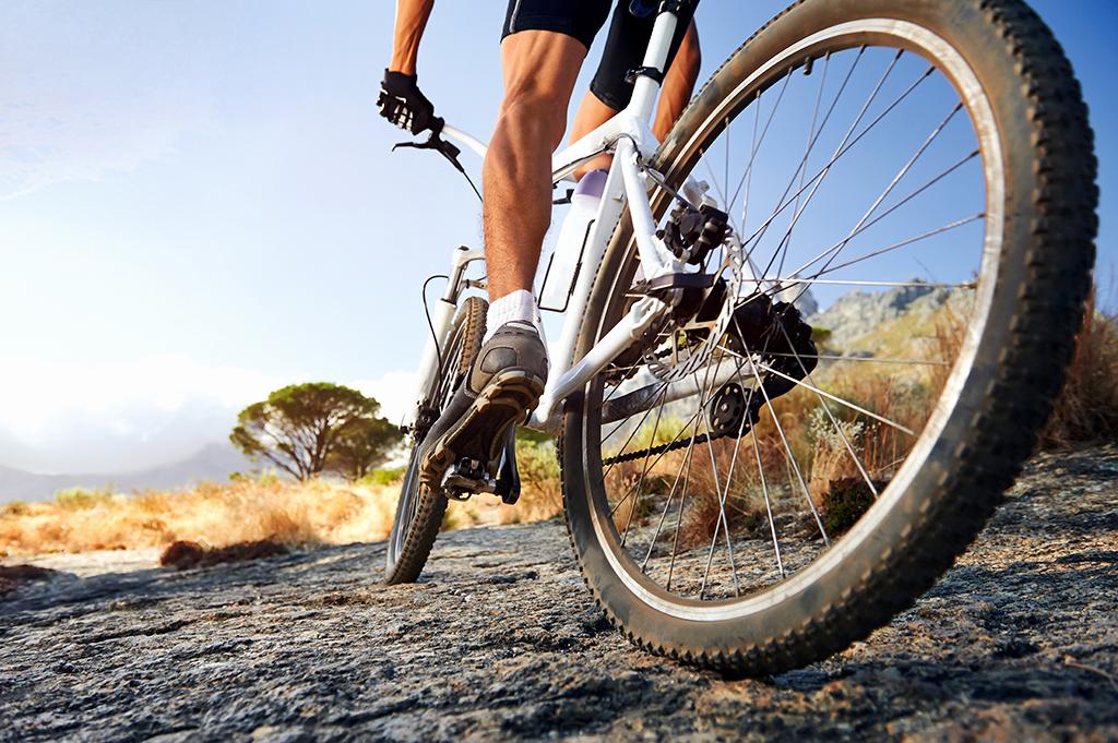 Mountainbike Insider Media & Werbung